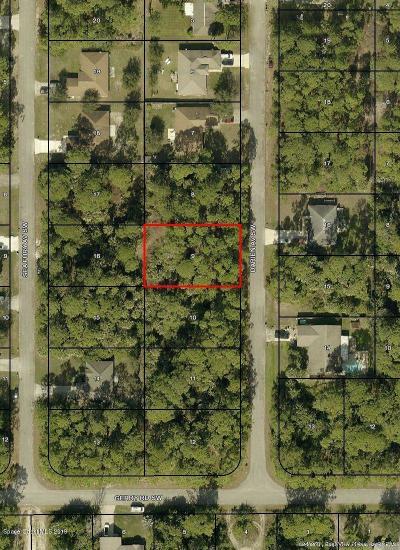 Palm Bay Residential Lots & Land For Sale: 570 Darien Avenue SW