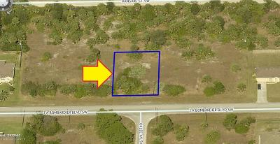 Palm Bay Residential Lots & Land For Sale: 543 J.a. Bombardier Boulevard SW