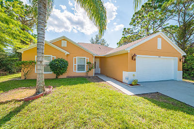 Palm Bay Single Family Home For Sale: 356 Sarah Road SW