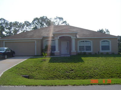 Palm Bay Single Family Home For Sale: 999 SE Carver Road SE