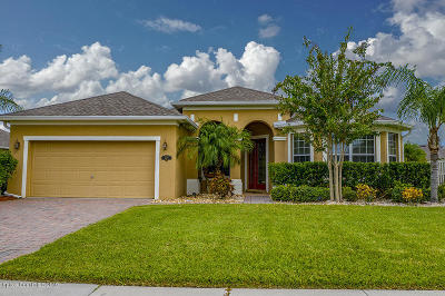 Single Family Home For Sale: 3472 Terramore Drive