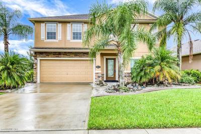 Palm Bay Single Family Home For Sale: 2625 NW Snapdragon Drive NW