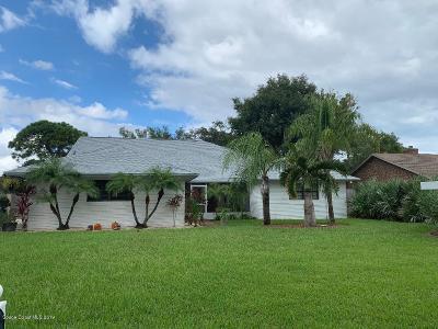 Palm Bay Single Family Home For Sale: 2535 NE Marietta Street NE