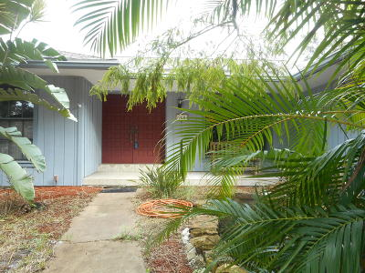 Palm Bay Single Family Home For Sale: 900 Mandarin Drive NE