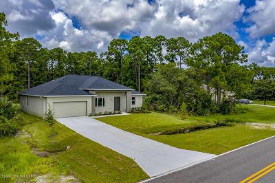 Palm Bay Single Family Home For Sale: 1855 Edith Street NE