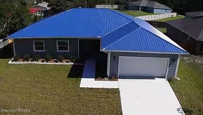 Palm Bay Single Family Home For Sale: 221 Christensen Avenue SE