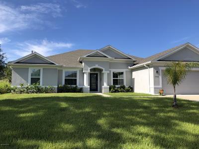 Palm Bay Single Family Home For Sale: 496 Binney Street NE