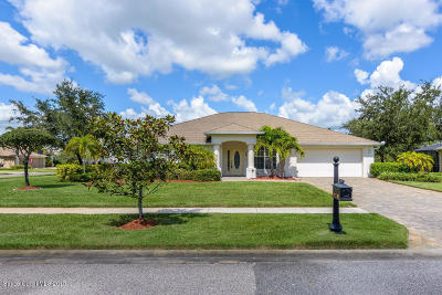Palm Bay Single Family Home For Sale: 2090 Thornwood Drive SE