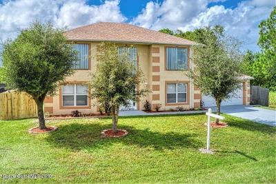 Palm Bay Single Family Home For Sale: 649 NW Belvedere Road NW