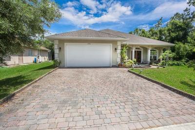 Palm Bay Single Family Home For Sale: 1592 Welland Street SE
