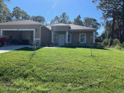 Palm Bay Single Family Home For Sale: 758 Winchell Street SW