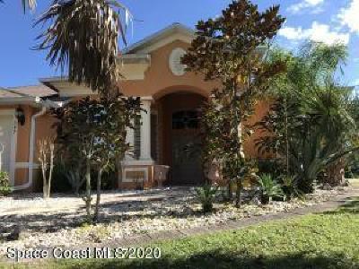 Palm Bay Single Family Home For Sale: 357 SW Santo Domingo Avenue SW