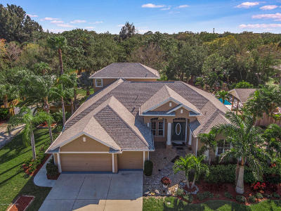 Palm Bay Single Family Home For Sale: 1940 Michels Drive NE