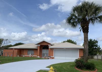 Palm Bay Single Family Home For Sale: 705 Simon Street SE