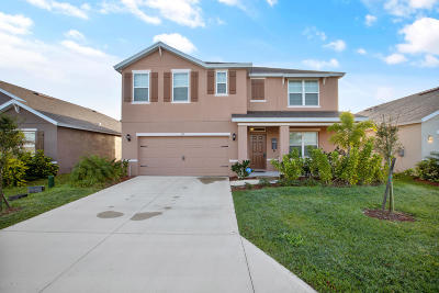 Palm Bay Single Family Home For Sale: 137 Sutherland Drive SW