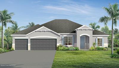 Palm Bay Single Family Home For Sale: 1802 Killian Drive NE