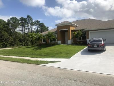 Palm Bay Single Family Home For Sale: 420 Topeka Road SW #PORT MAL