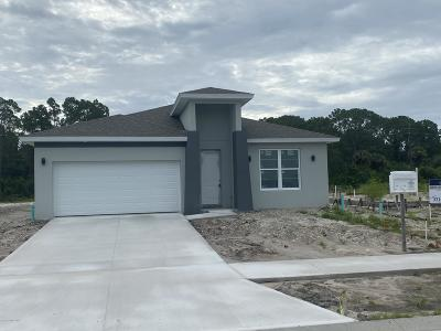 Palm Bay Single Family Home For Sale: 1076 Corbin Circle SW