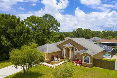 Palm Bay Single Family Home For Sale: 1588 Raymore Street NW