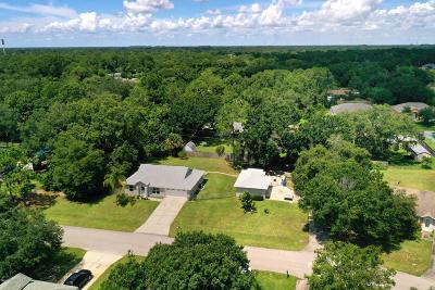 Palm Bay Single Family Home For Sale: 1054 Arkansas Avenue SE