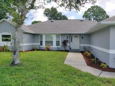 Palm Bay Single Family Home For Sale: 1031 Roanoke Court NE
