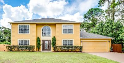 Palm Bay Single Family Home For Sale: 1412 Hayworth Circle NW