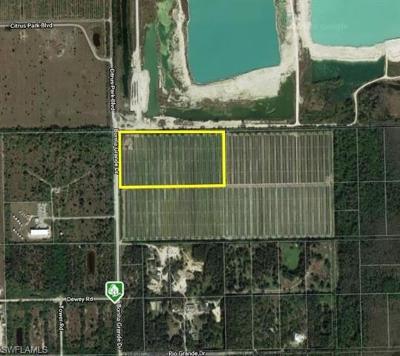 Bonita Springs Residential Lots & Land For Sale: Bonita Grande Dr