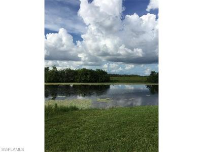 Naples Residential Lots & Land For Sale: 18499 Royal Hammock Blvd