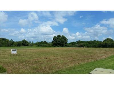 Bonita Springs Residential Lots & Land For Sale: 12284 Casals Ln