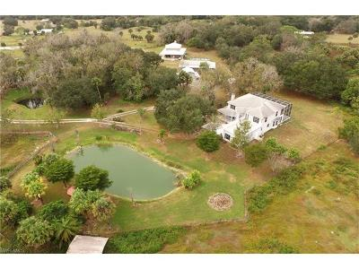 Fort Myers Single Family Home For Sale: 13271 Peace Rd