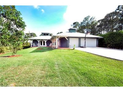 Naples Single Family Home For Sale: 6060 Painted Leaf Ln