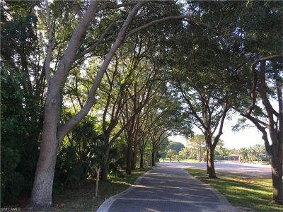 Residential Lots & Land For Sale: 88 Cajeput Dr
