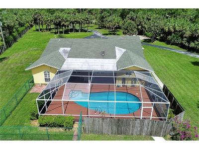 Naples Single Family Home For Sale: 331 NW 17th St