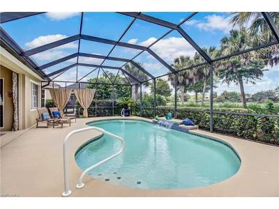 Bonita Springs Single Family Home For Sale: 23639 Via Carino Ln
