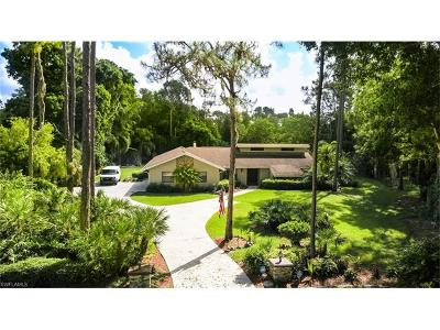 Fort Myers Single Family Home For Sale: 13832 Pine Villa Ln