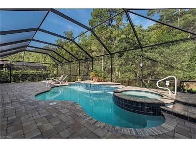 Bonita Springs Single Family Home For Sale: 26454 Doverstone St
