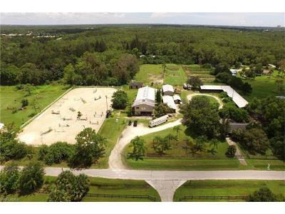 Fort Myers Single Family Home For Sale: 7200 Carousel Ln