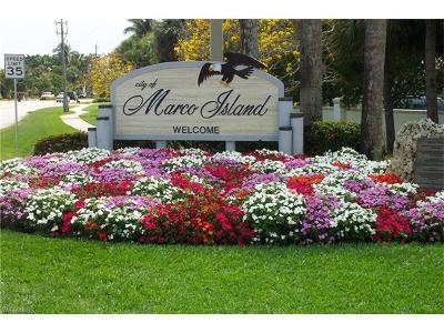 Marco Island Single Family Home For Sale: 1640 Almeria Ct