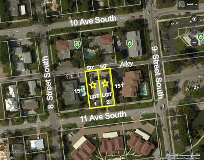 Naples Single Family Home For Sale: 825-855 S 11th Ave