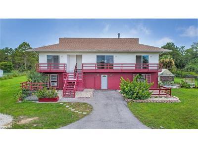 Naples Single Family Home For Sale: 3420 NE 24th Ave