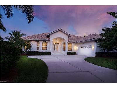 Bonita Springs Single Family Home For Sale: 27021 Driftwood Drive