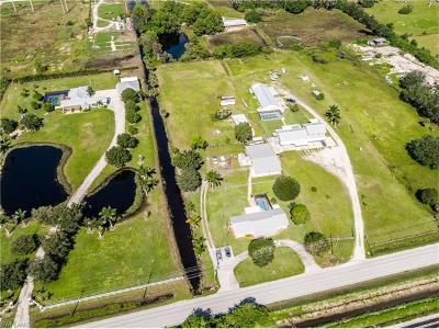 Bonita Springs Single Family Home For Sale: 26250 Morton Ave