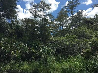 Naples Residential Lots & Land For Sale: NW 35th Ave