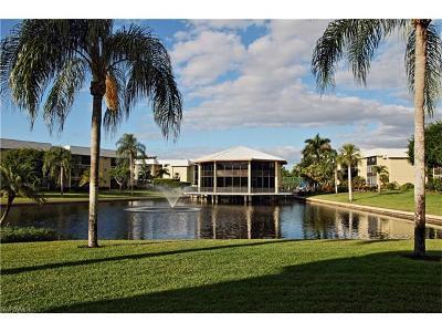 Naples Condo/Townhouse For Sale: 788 Park Shore Dr #D35