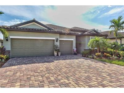 Estero Single Family Home For Sale: 20431 Black Tree Ln