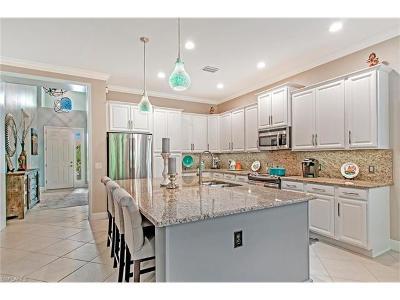 Bonita Springs Single Family Home For Sale: 9243 Isla Bella Cir