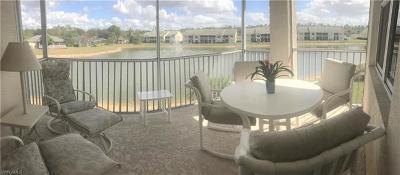 Bonita Springs Condo/Townhouse For Sale: 9620 Village View Blvd #202