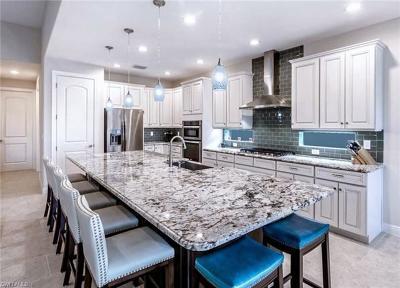 Bonita Springs Single Family Home For Sale: 23352 Sanabria Loop