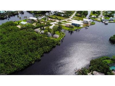 Bonita Springs Residential Lots & Land For Sale: 27495 Big Bend Rd