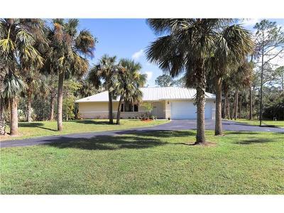 Naples Single Family Home For Sale: 160 S Wilson Blvd